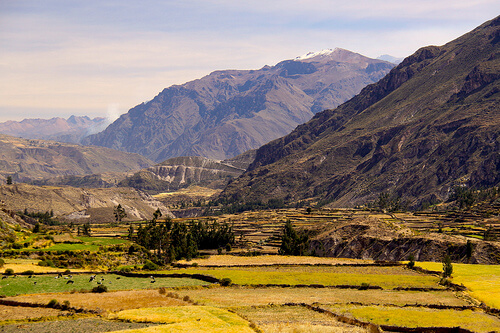 Maca Mountains of Peru